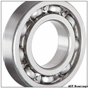 AST ASTT90 28060 plain bearings