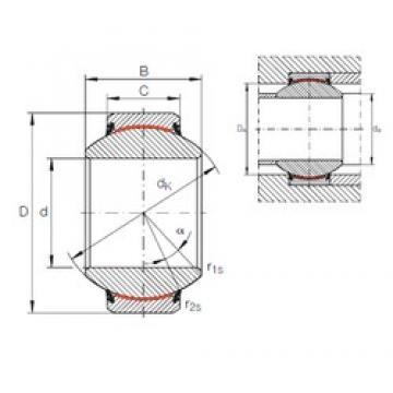 INA GE 100 FW-2RS plain bearings