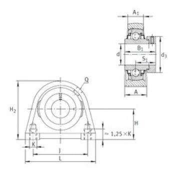 INA RSHE20-N bearing units
