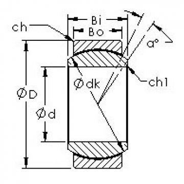 AST GEG40C plain bearings