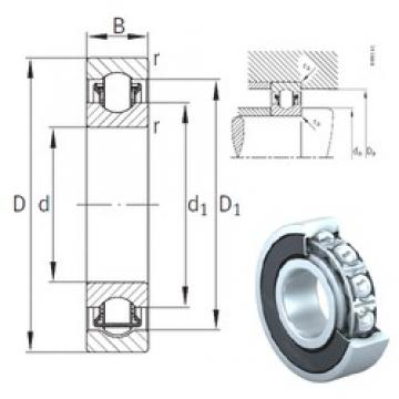 INA BXRE002-2RSR needle roller bearings