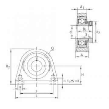 INA PSHE15 bearing units