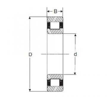 SIGMA N 2318 cylindrical roller bearings