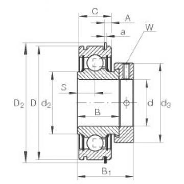 INA RAE25-NPP-NR deep groove ball bearings