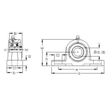 AST UCP 218 bearing units