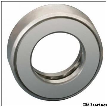 INA SL06 036 E cylindrical roller bearings