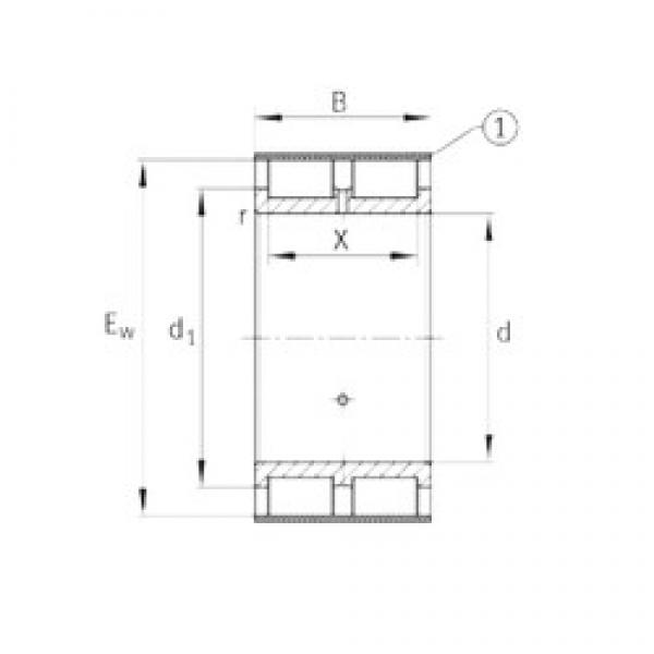 INA RSL185036-A cylindrical roller bearings #3 image