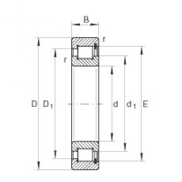 INA SL183024 cylindrical roller bearings #3 image