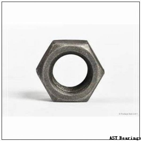 AST AST40 2030 plain bearings #1 image